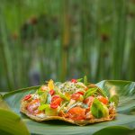 plant-based cuisine fivelements habitat