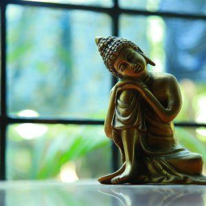 buddha birthday fivelements habitat hong kong